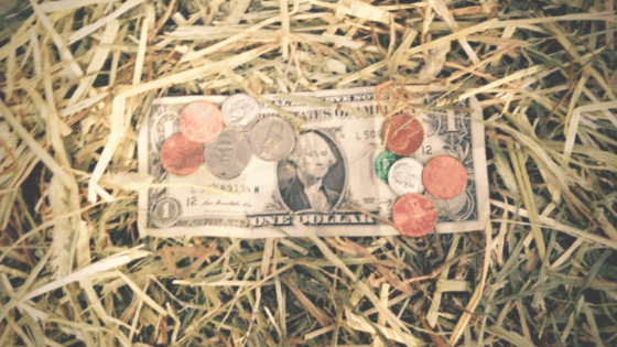 Does Homesteading Save Money?