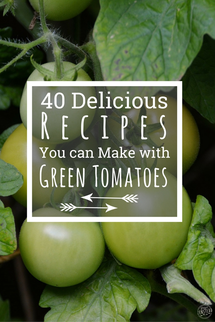 40+ delicious recipes you can make with green tomatoes
