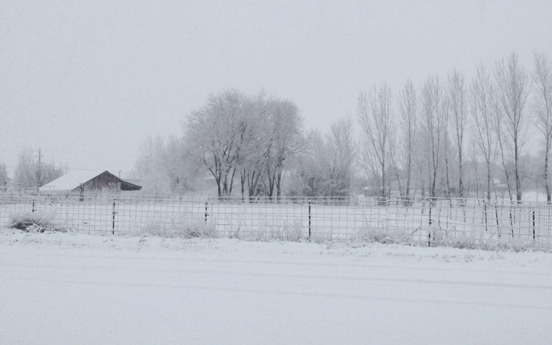 Prepare for Winter on the Homestead + Free Checklist!