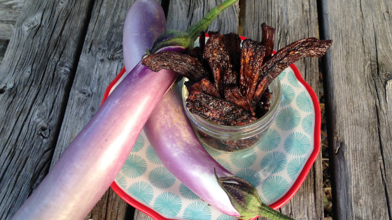 Eggplant jerky is a healthy & yummy snack and a great way to use extra eggplants from your garden! And, yes, it actually tastes like real jerky!