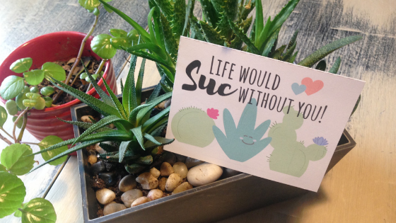 These free, printable Valentine's Day cards are a perfect way to show your love for that special homesteader or gardener in your life!