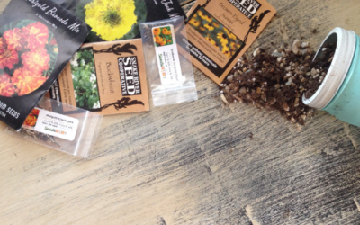 My Top Three Picks for High-Quality, Non-GMO Heirloom Seeds