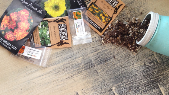 Get the scoop on my three favorite companies for high-quality, non-GMO heirloom seeds!