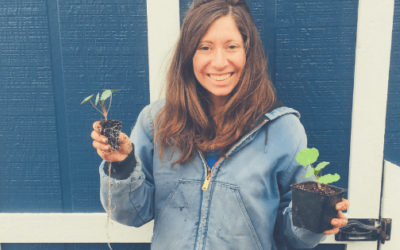 April 2019: Spring Homestead Chores & Maintainence