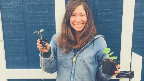Behind the Scenes April 2019: Holding seedlings that are being potted up into larger pots