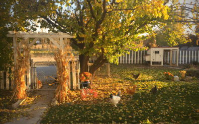 October 2019: Savoring the Fall Season