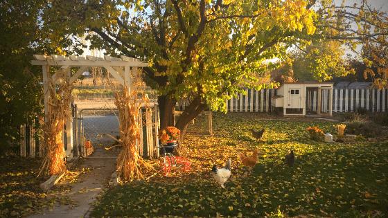 October 2019: Savoring the Fall Season