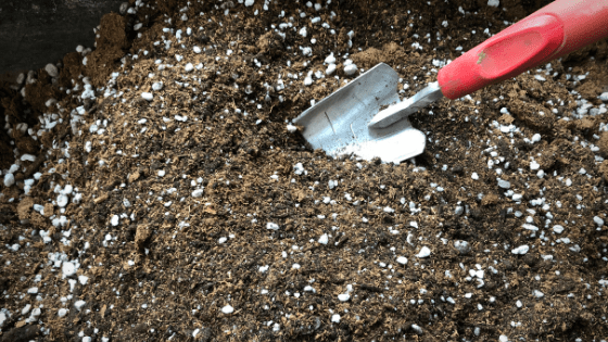 How to Make a Seed Starting Soil Mix