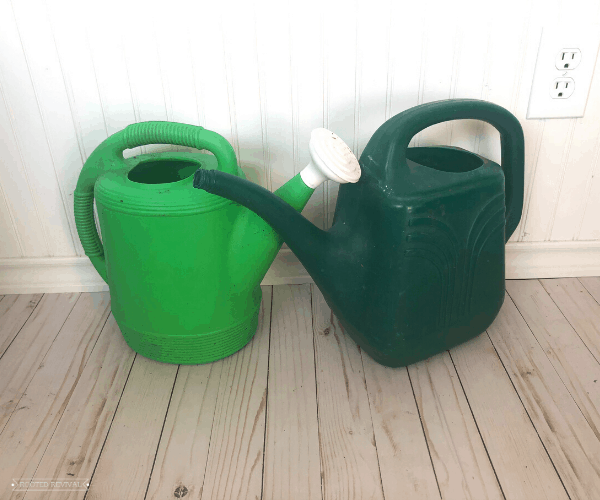 Two green outdoor watering cans