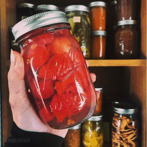 A hand holds a jar of canned red tomatoes in front of shelves with other canned goods