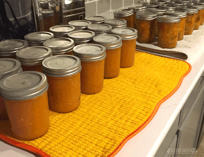 Rows of orange canned food sitting on towels on a kitchen counter