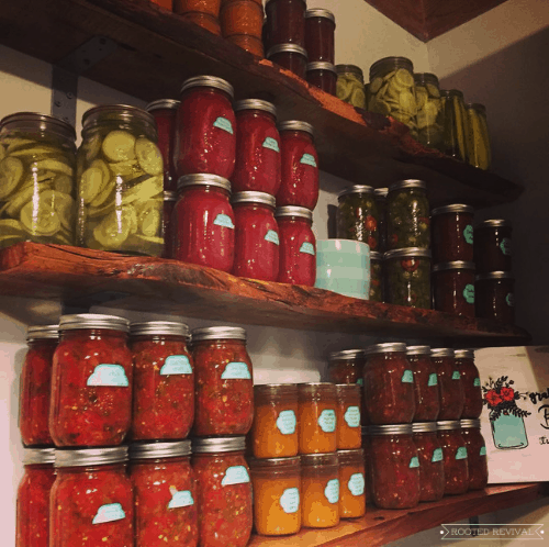 shelves with canned goods stacked on them